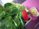 Mimi2005_0117_075224aa1